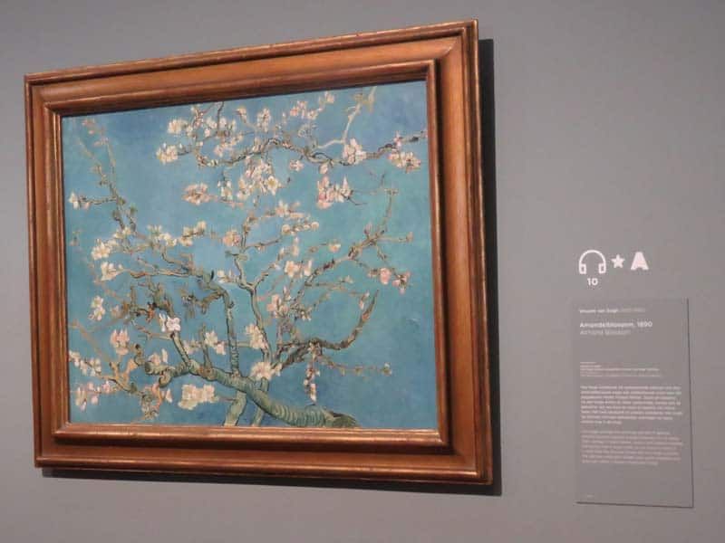 Amendoeira em Flor, quadro do Van Gogh preferido do DJ Armin van Buuren