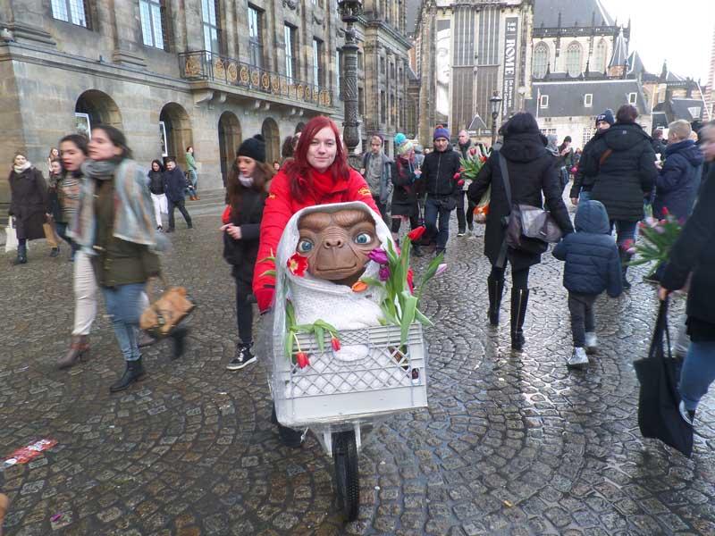 Dia da Tulipa na Praça Dam em Amsterdam: garota na bicicleta com ET do filme ET o Extraterrestre cheio de tulipas