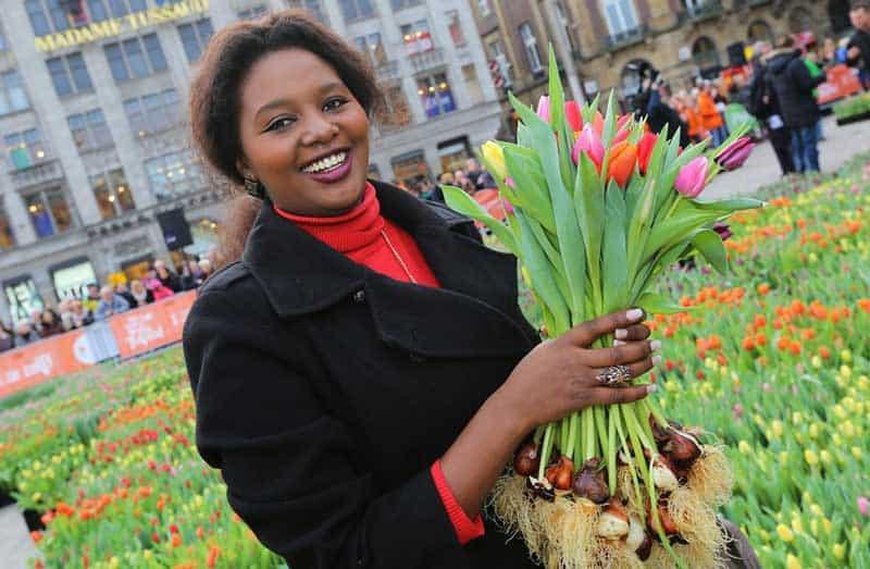 Dia da Tulipa na Holanda: Moca com tulipas na Praça Dam em Amsterdam