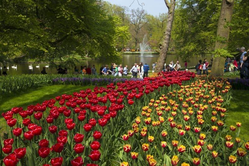 Jardim de tulipas no Keukenhof, na Holanda, com lago e fonte ao fundo