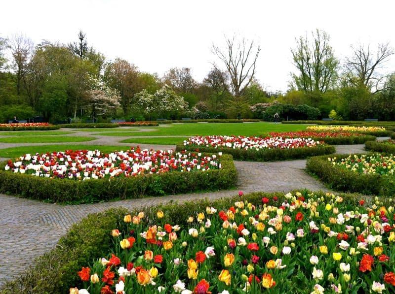 Vondelpark em Amsterdam na primavera, cheio de tulipas.