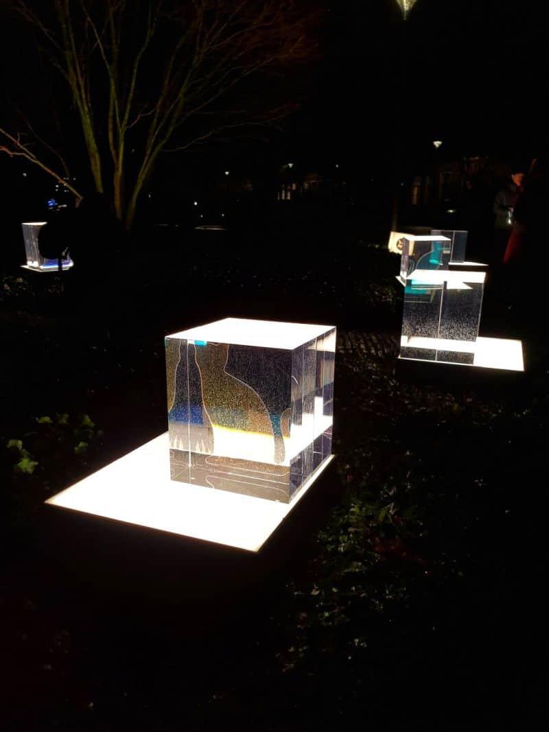 O Jardim dos Gatos de Schrodinger é uma instalação do Amsterdam Light Festival, na Holanda