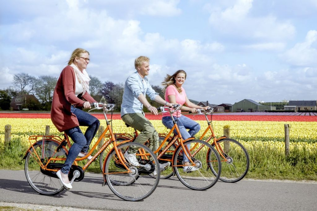 Como alugar bicicleta no Keukenhof e passear pelos campos de tulipa da região. Grupo de amigos passeiam pelos campos de flores da Holanda.