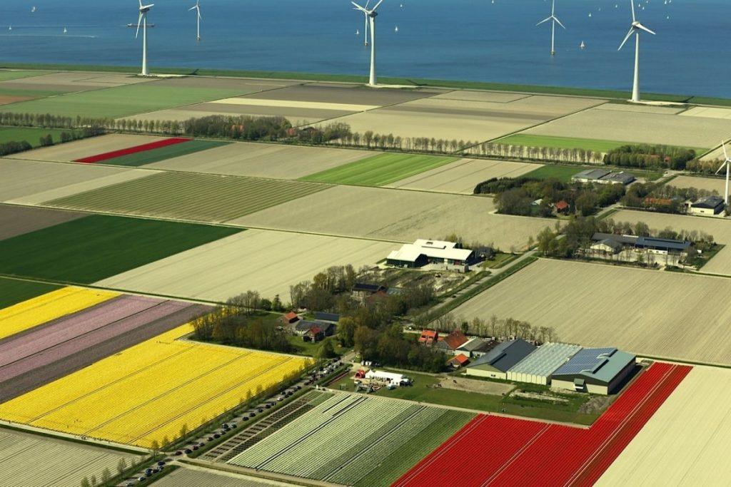 Diferença do nível do mar entre o Golfo do Zuiderzee e o Noordoostpolder, onde fica a maior rota de campos de tulipas da Holanda e do mundo