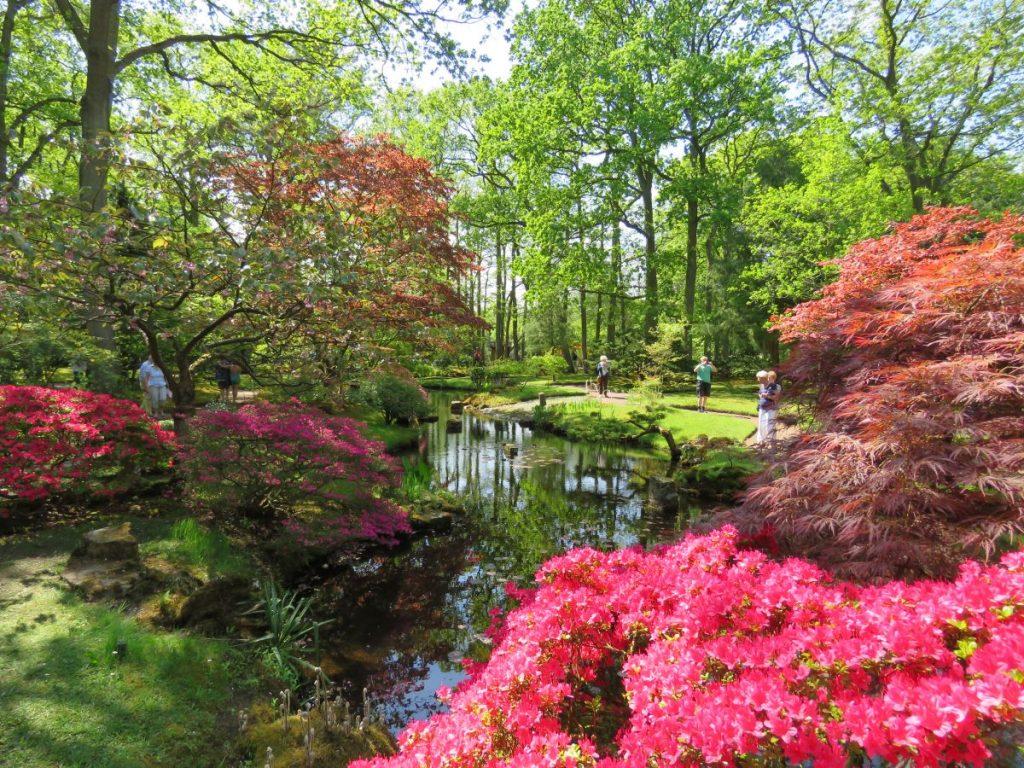 Jardim Japonês de Haia, na Holanda