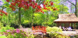 Jardim Japonês de Haia, na Holanda, no parque Clingendael, é o maior e mais antigo da Holanda. Vista da ponte japones e do pavilhão japonês