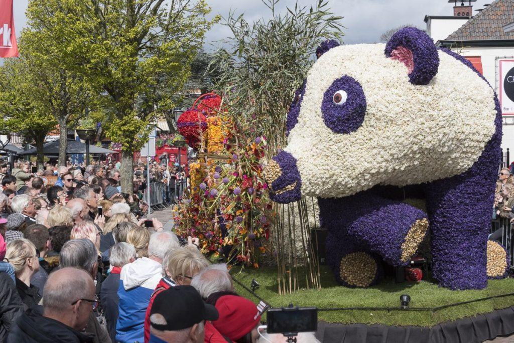 Na Parada das Flores do Keukenhof, pessoas assistem carro alegórico em forma de urso panda que passa pelas ruas da Holanda