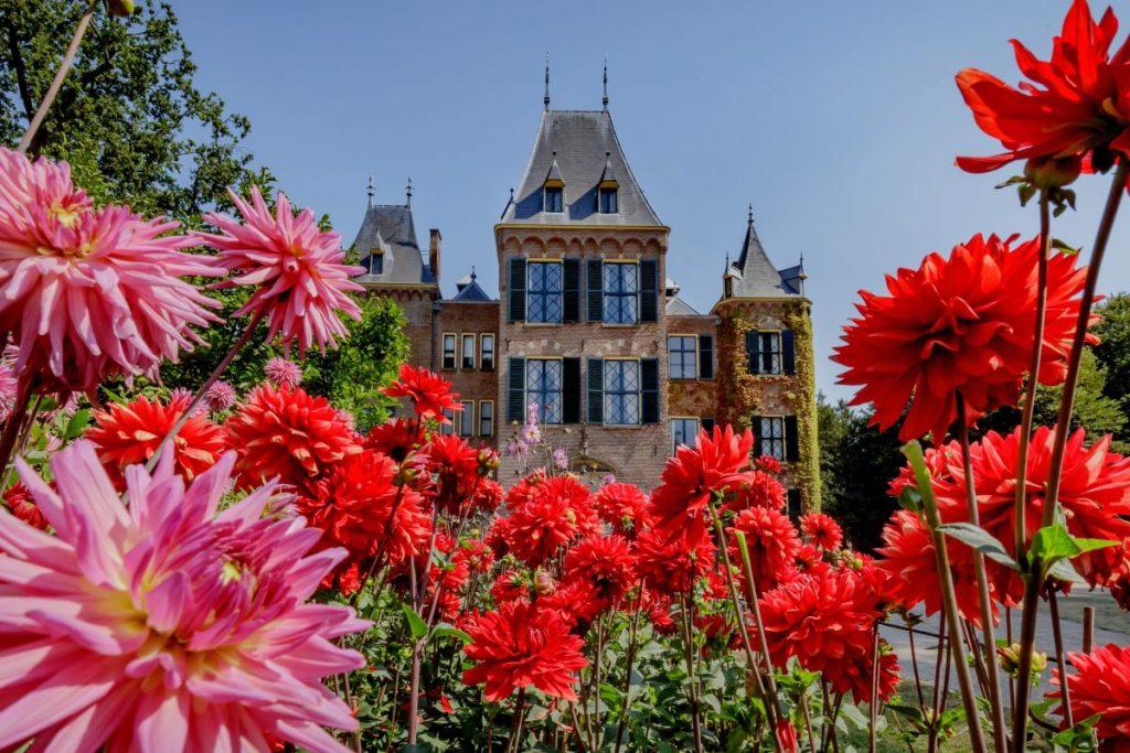 Jardim de dálias do Castelo Keukenhof, que fica ao lado do parque Keukenhof, o maior parque de tulipas da Europa. Durante o verão você pode visitar o castelo e campos de dálias de graça